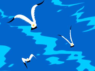 儿歌海鸥的简谱