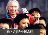 珍·古道尔中国之行