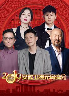 2019年安徽卫视元宵晚会