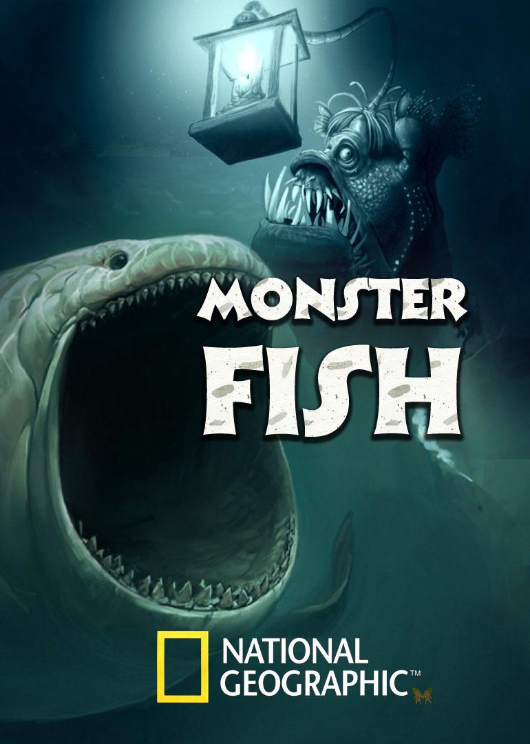 寻找超级大鱼