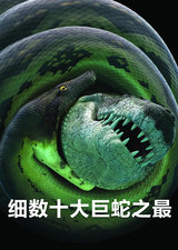 细数十大巨蛇之最