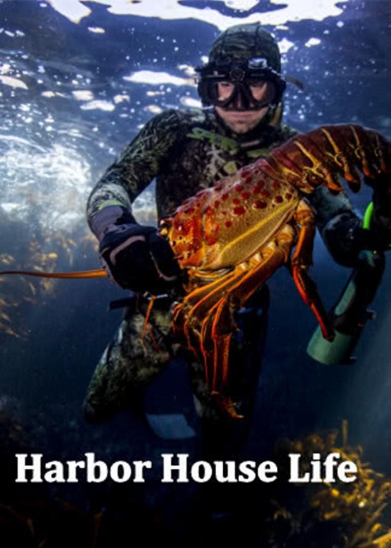 harbor house life