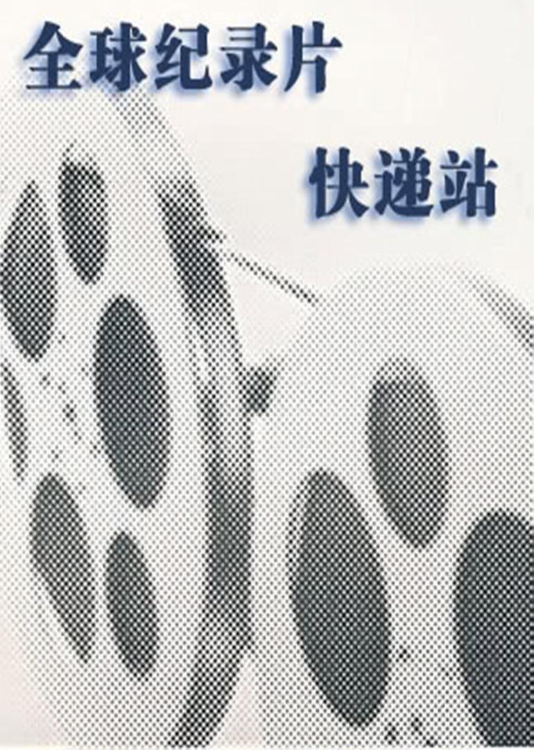 全球纪录片快递站