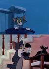 当猫撞见老鼠