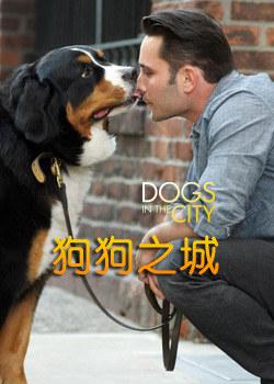 狗在都市/狗狗在都市/狗狗之城