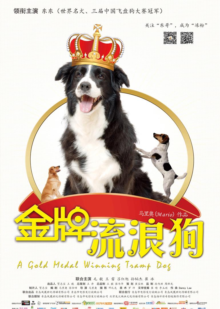 金牌流浪狗