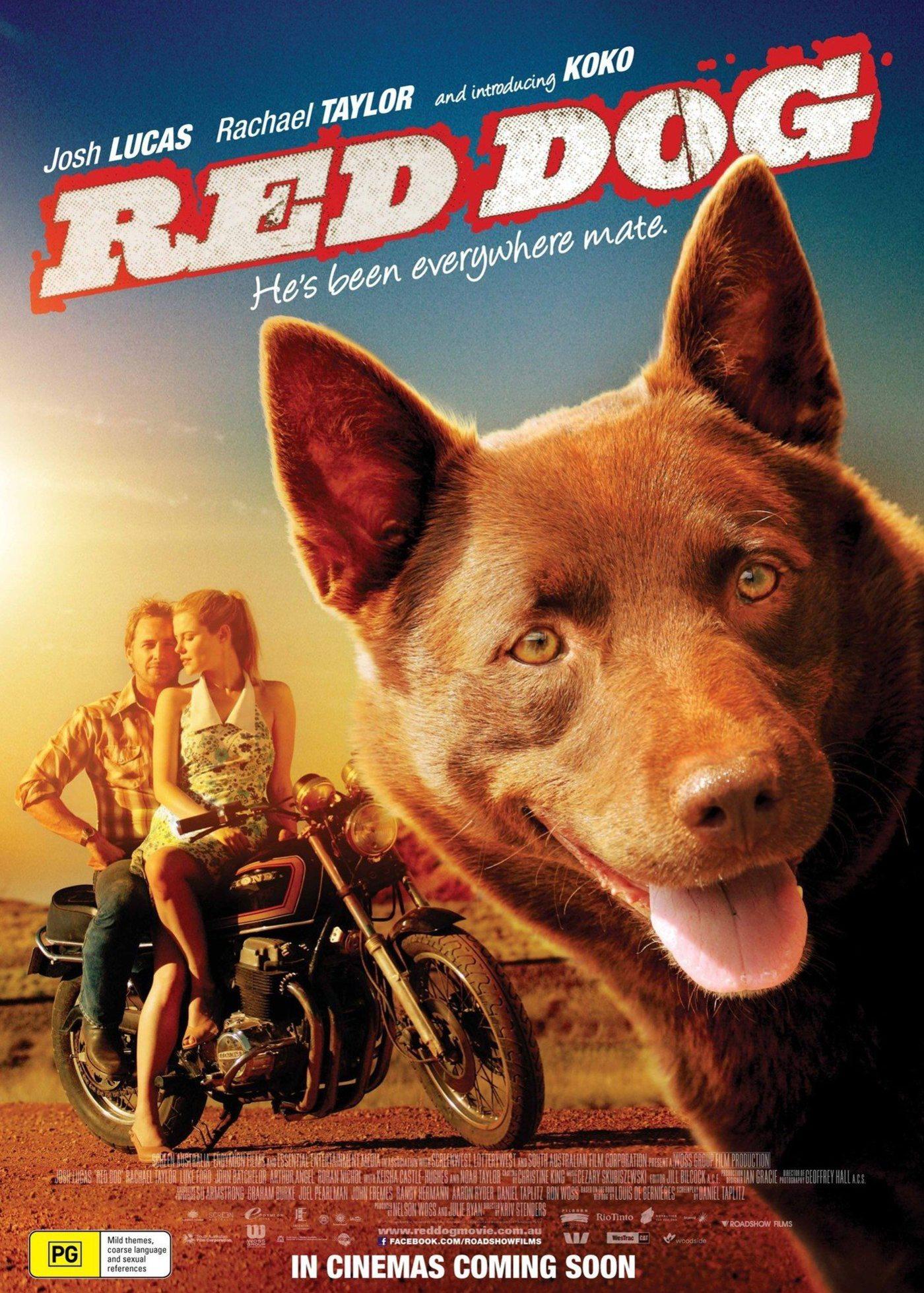 红犬历险记