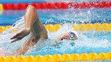 2017游泳世锦赛第11比赛日
