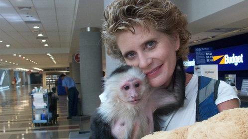 我的孩子是猴子