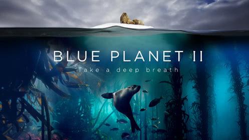 蓝色星球 第2季