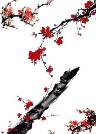 中国水墨画:如何画梅花