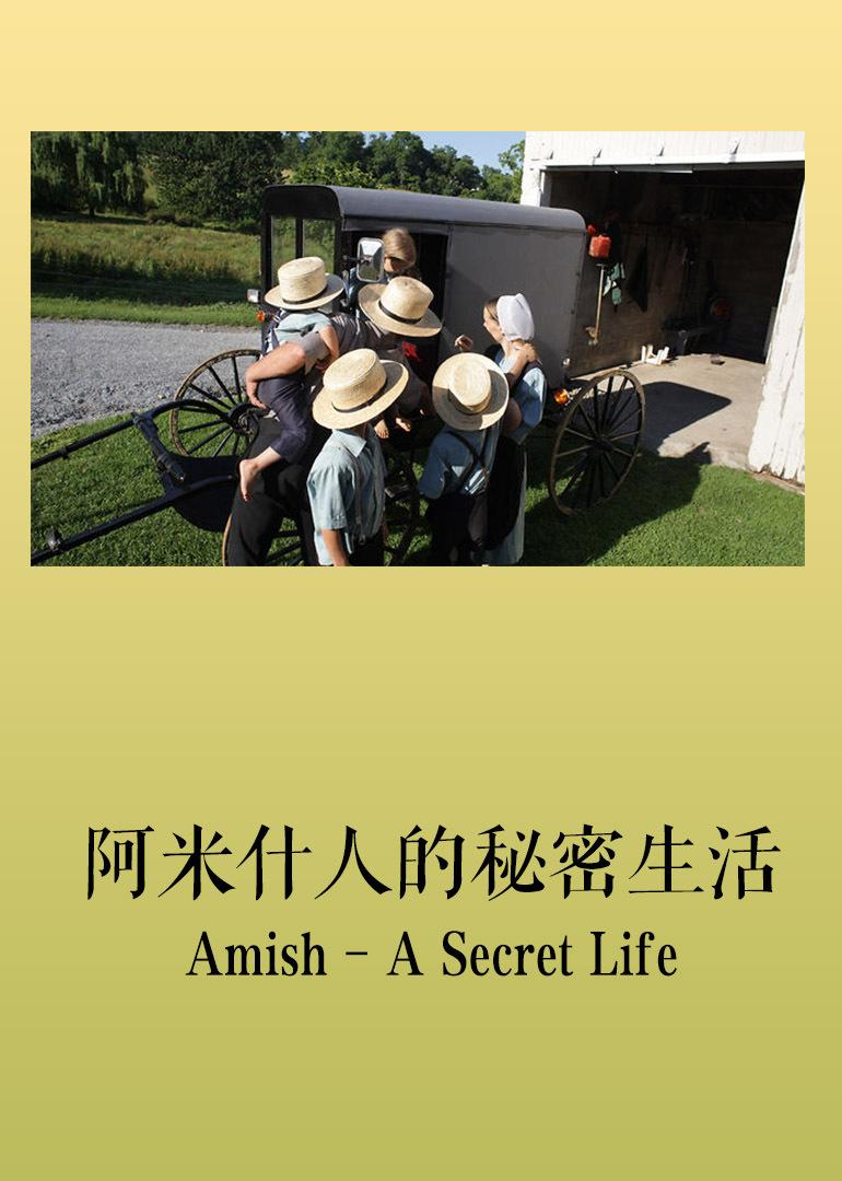 """阿米什人:生活在最发达国家的""""古代人"""""""