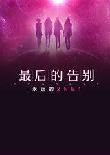 最后的告别,永远的2NE1
