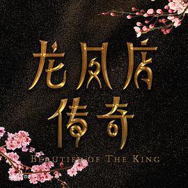 龙凤店传奇第一季