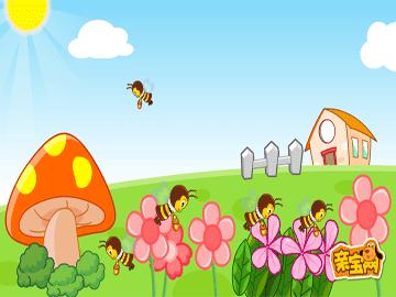 小蜜蜂亲宝儿歌