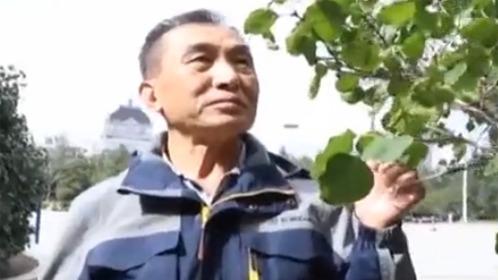 相亲相爱20171003 叔叔爱旅游走过大江南北